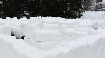 Le fameux labyrinthe fait de glace et de neige lors du Festival feu et glace du 17 février 2018 à Repentigny.