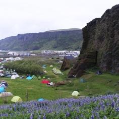 10 juin: Camping de Vik | Ce camping était parfait, de l'emplacement aux installations pour les campeurs. Le seul bémol était les places de stationnement qui étaient inexistantes. 9/10 Photo: Nathan Jomphe.