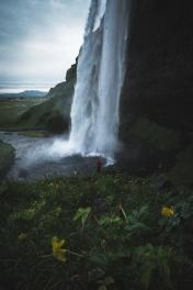Seljalandsfoss mesure 65 mètres de hauteur. Illuminée la nuit et encerclée de touristes, elle n'a rien d'une chute d'eau typique. Elle s'apparente plutôt à un monument très bruyant. Elle vaut tout de même la visite.
